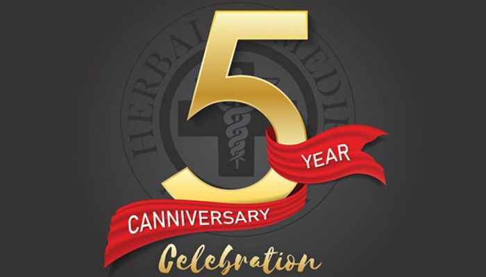 5 year canniversary celebration