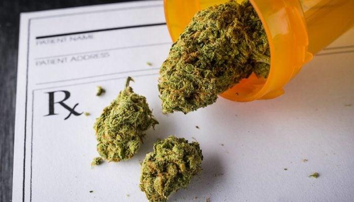 medical cannabis in prescription bottle