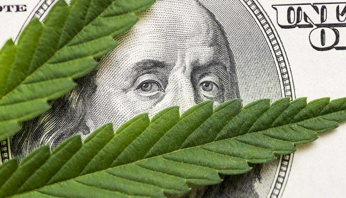 cannabis leaf hundred dollar bill